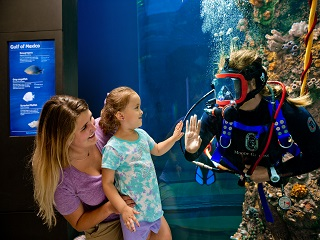 Explore Moody Gardens Family Package