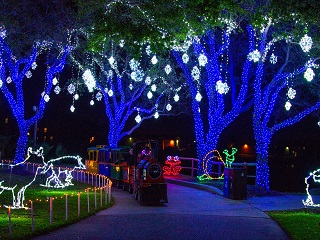 Festival of Lights Couples Package with Breakfast