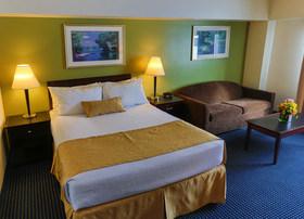 Single Queen ADA Room